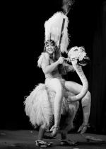 Filly Follies Burlesque Show | VELVET VOYAGE  Midnight Circus